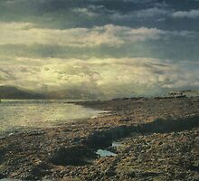 At Penmon Point by Sarah Jarrett