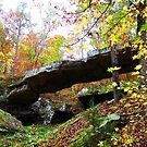 Natural Bridge of Arkansas by Lisa G. Putman