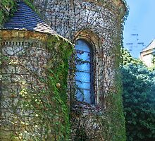 Turret of the Princess by Eileen McVey