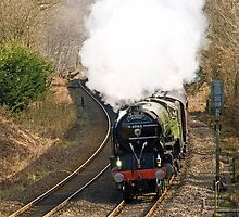The Cathedrals Express  by Nick Jenkins