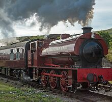 Steam Locomotive Pontypool and Blaenavon Railway by Nick Jenkins