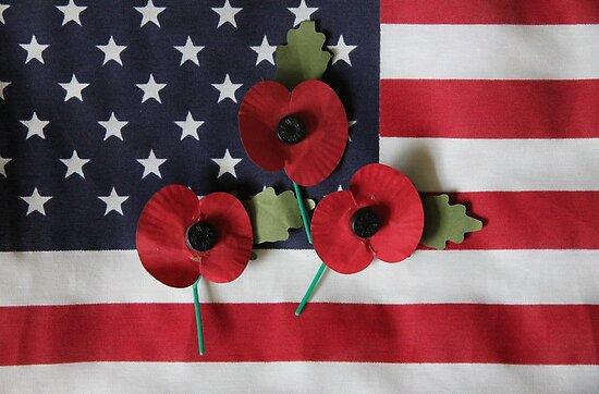 Poppies on a Flag by Daniel Carroll