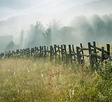Blue Ridge Parkway Wooden Fence Summer Landscape by MarkVanDyke