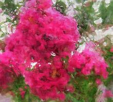 Crape Myrtle Sketchy by Christopher Johnson