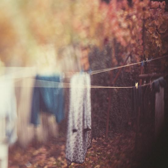 November by DejaReve