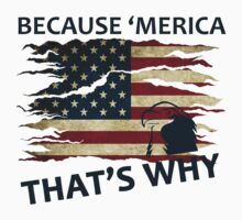 Because 'Merica, that's why by RossP914
