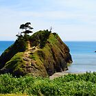 Battle Rock - Port Orford, OR by Joe Blount