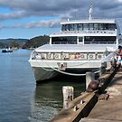 Ipipiri at the small port of Opua........................! by Roy  Massicks
