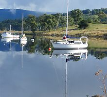 Reflections - Huon Valley, Tasmania by imaginethis