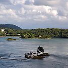 Menai Strait - Wales by Arie Koene