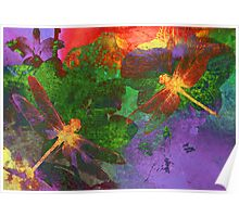Painting Dragonflies & Flowers Poster
