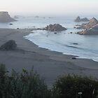 Good morning beach~ by Christina Herbert