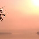 Lake Champlain - sunrise - 8.28.2013 by Nadia Korths