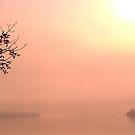 Lake Champlain - sunrise - 8.28.2013 by Nadia Korths