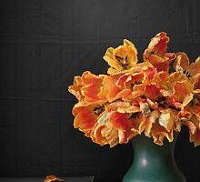 Parrot Tulips by bgbcreative