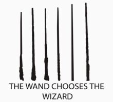 The Wand Chooses the Wizard by Robertrobot