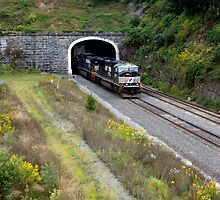 The Historic Gallitzin Tunnels by Gene Walls