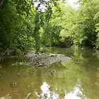 Troublesome Creek 4 by jheflinphotos