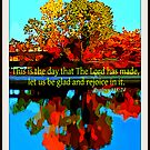 This Is The Day by Vince Scaglione