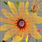 Yellow sunflower design vertical view by ♥⊱ B. Randi Bailey