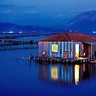 Pelada @ Messolonghi lagoon by Hercules Milas