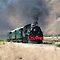 Steam train engines