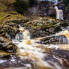 Thornton Force - Ingleton Waterfall Trail by Tony Shaw