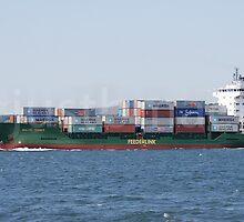 Feederlink Baltic Trader by justbmac