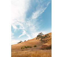 Dry California Countryside Photographic Print