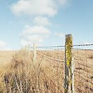 Rustic Fence by visualspectrum