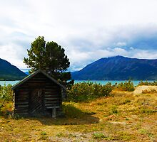 Tiniest Cabin in Carcross  by ChelcieSPorter