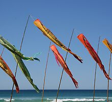 """Day 243 