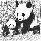 Panda love by Chris-Cox