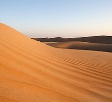 Thar Desert Sand Dunes by Travelographer