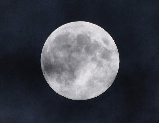 Harvest Moon by venny