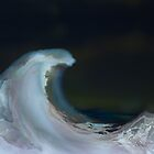 Wave by Robin Petersen