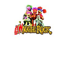 Swaggle Rock Photographic Print