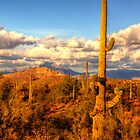 Arizona Landscape by George Lenz