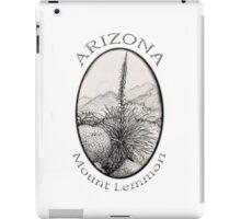 A Desert Scene North of Mount Lemmon, Arizona iPad Case/Skin
