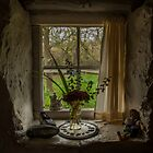 Cottage window by John Hallett