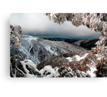 Alone on the mountainside in winter Canvas Print
