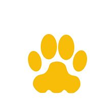 Orange Big Cat Paw Print by kwg2200