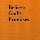 Believe Gods Promises by Tigerstyle