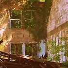 Ruins  from a old school  house  by Tracey Hampton