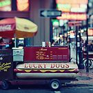 Lucky Dogs in the French Quarter by Alfonso Bresciani