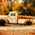 Loukonen Farms Pumpkin Truck by Catherine Fenner
