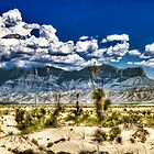 Guadalupe Mountains of West Texas by Ray Chiarello