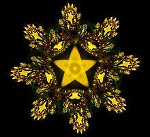 Gold Star by Sandy Keeton