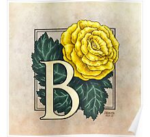 B is for Begonia - full image Poster