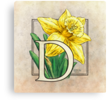 D is for Daffodil - full image Canvas Print